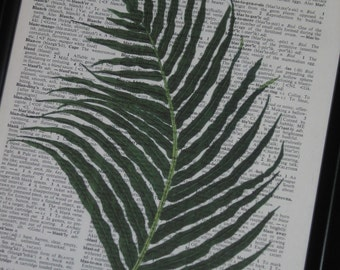 Fern Upcycle Dictionary Art Print Book Page Wall Art 8 x 10 Green
