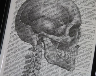 BOGO SALE Skull Print Dictionary Art Upcycled Wall Art 8 x 10