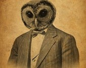Owl in a Suit Portrait 8x10 Art Print