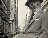 Cat in Suit - Animal in Suit Art Print - 8x10 Art Print