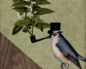 Bird Prints - A Bird and His Pipe 8x10 Art Print