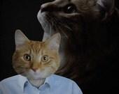 Cat Portrait - 80s Cat - 1980s Portrait Studio Cat 8x10 Art Print