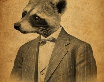 Raccoon in a Suit Portrait 8x10 Art Print