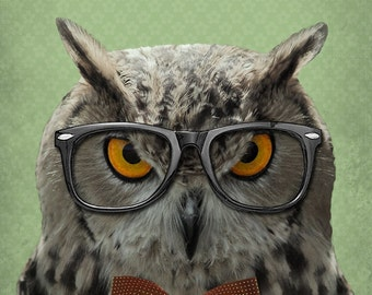 Owl Decor - Owl Art - The Studious Owl - Owl Art Print - 8x10  Art Print
