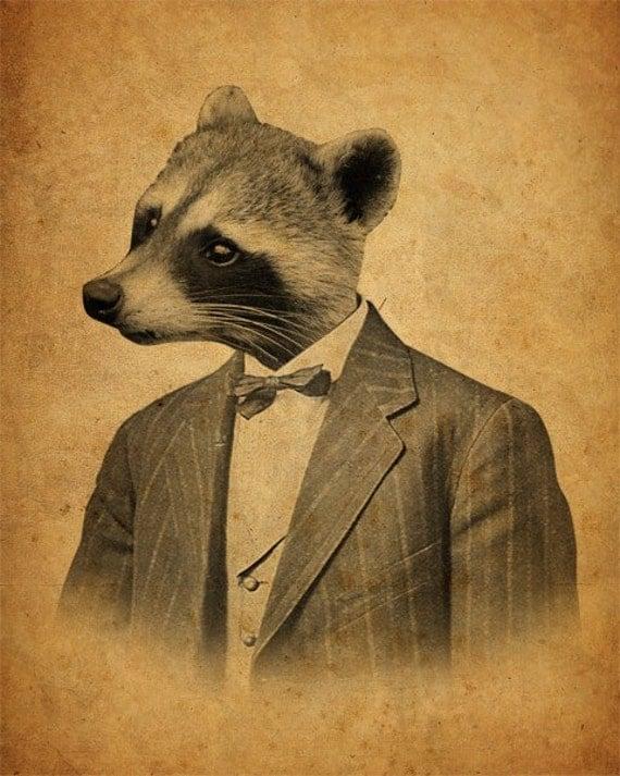 Raccoon in a Suit Portrait 8x10 Art Print