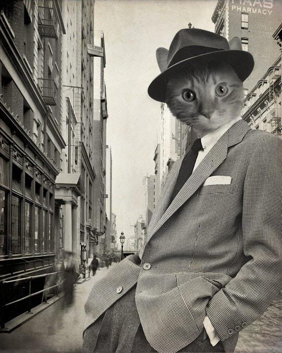 Арт кот в костюме