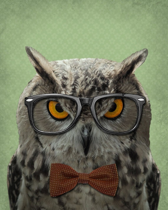 owl decor owl art the studious owl owl art print 8x10
