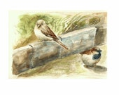 """Two Sparrows, 8""""x10"""" print of watercolor painting"""