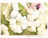 """Lots of Petunias, a 5""""x7"""" print of a watercolor, printed on 8""""x10"""" paper"""
