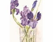 "Purple Irises in glass vase, 8"" x 10""  Original Watercolor"