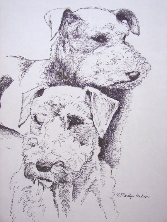 """Two Airedales, Original Pen and Ink, 11"""" x 14"""""""