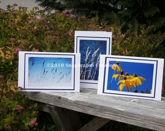 Photo Greeting Cards, Yellow Coneflowers, Summer Grass at Water's Edge, Blank Inside, Set of 3 Cards