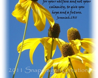 Nature Photo with Bible Verse Jeremiah 29:11, 8x10, Yellow Flowers Bright Blue Sky