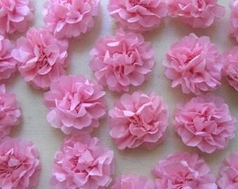 Pretty in Pink mini tissue pom flowers (Set of 20)