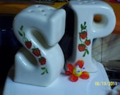 Cute Vintage Kitchen Salt and Pepper Shakers