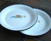 Vintage Enameled Metal Plates - Set of Two