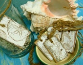 White Weathered Beach Sea Shell Stamped Wood and Twine Tags - 6