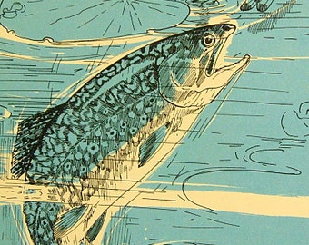 Vintage Blue Fish Book Illustration Picture Beach Lake House Decor - Eastern Brook Trout or Char