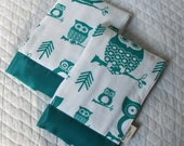 Burp Cloths with Turquoise Owls Set of Two