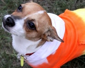 Dog hoodie, candy corn, costume for Halloween and Fall