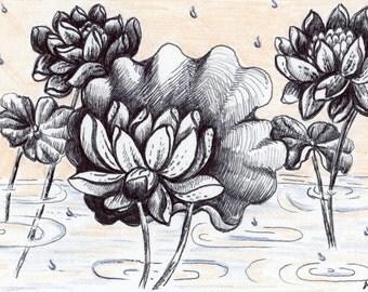 Lotus in the Rain- Lotus flower- Rain Drops- Pastel- Pen and Ink Drawing Hand Drawn Card - Miniature Art