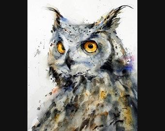 OWL Watercolor Bird, Owl Art Print By Dean Crouser
