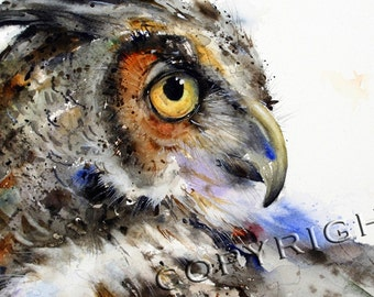 OWL Watercolor Print By Dean Crouser -
