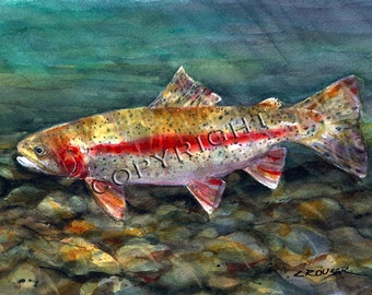 RAINBOW TROUT Watercolor Fish Print by Dean Crouser