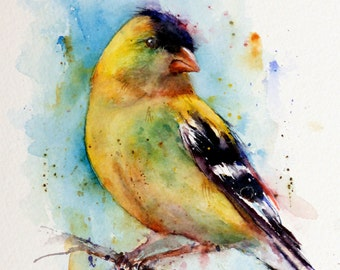 GOLFINCH Watercolor Bird Print by Dean Crouser