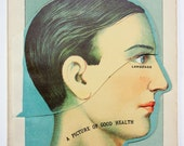 1916 Pop-Up Human Anatomy Illustration - The Head