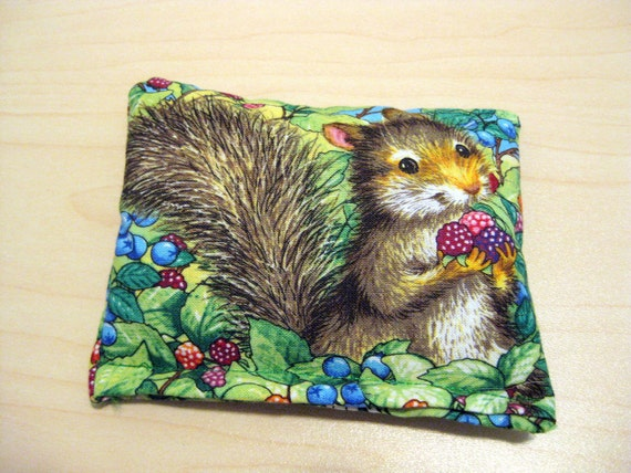 Hot / Cold Pack - Squirrel and Chick - Flaxseed