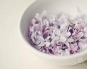 Bowl of Lilacs - 11x14 Fine Art Print - Lilacs in a Bowl Original Wall Art - Purple Petals