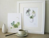 Succulent Watercolor Print Set - Any FOUR Succulent Art, Succulent Print / 8x11 Botanical Prints, Modern Home Decor