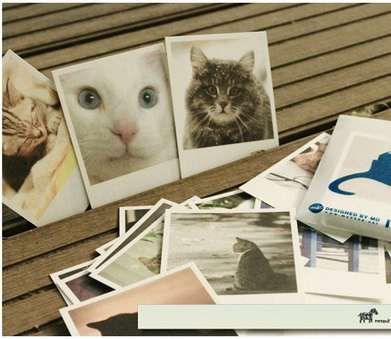 25 Sheets Korea Vintage Poster Cards diary blessing card-I Am a Cat