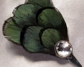 Beautiful Green Lady Amherst Feather Mini Clip