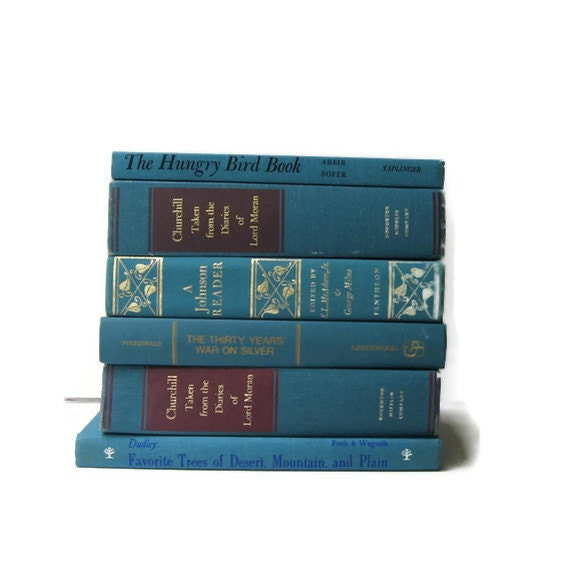 Vintage Books Turquoise Teal Wedding Decor  Home  and Photography Prop
