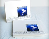 Peace Dove Note Card Set, All Ocassion featuring Dove Painting