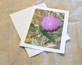 Card Purple Flower Notecard Set of 6