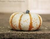 "Autumn Thanksgiving Pumpkin Fall Rustic Brown Orange Home Decor Photo - Fine Art Food Photography - 5x7 ""Happy Pumpkin"""