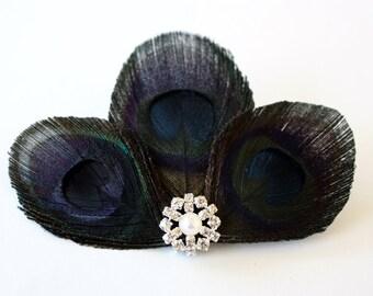 Sneaky - Black feather hair clip / Peacock fascinator