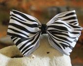 White Zebra Bow with Black Knot Center