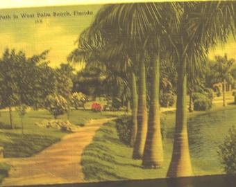 Vintage linen colortone postcard of West Palm Beach, Florida