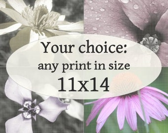 11x14-inch Fine Art Photograph of your choice