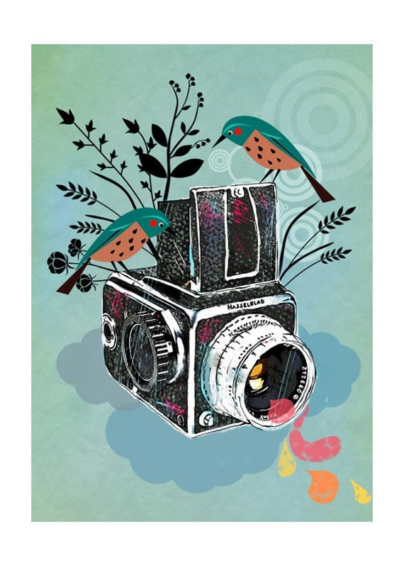 Vintage Camera Hasselblad-art print