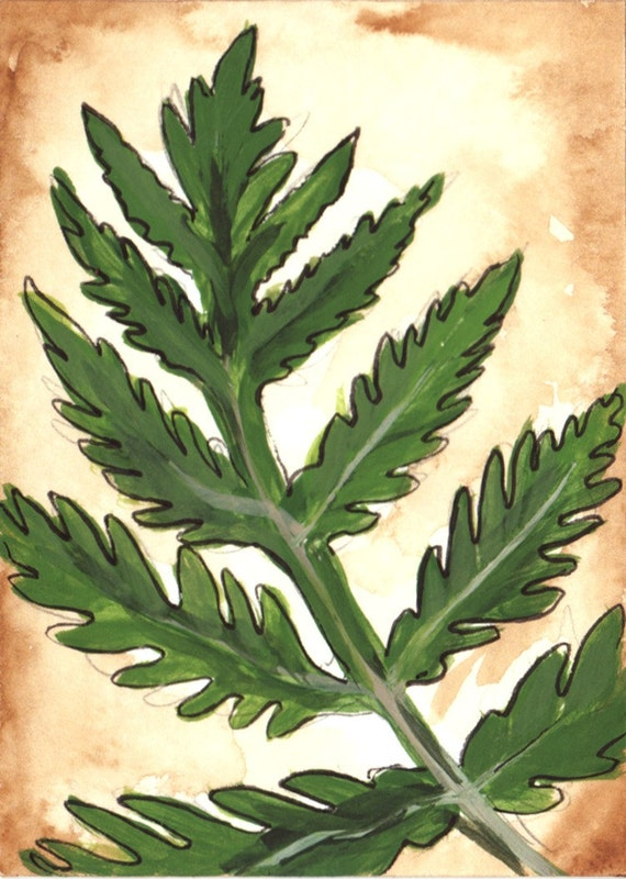 Fern Watercolor Painting Original Art Card with Free Shipping - Botanical Fern Forest Vintage Style Fine Art