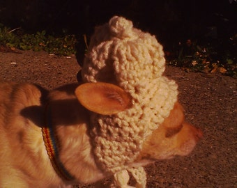 Crochet Doggie  Hat