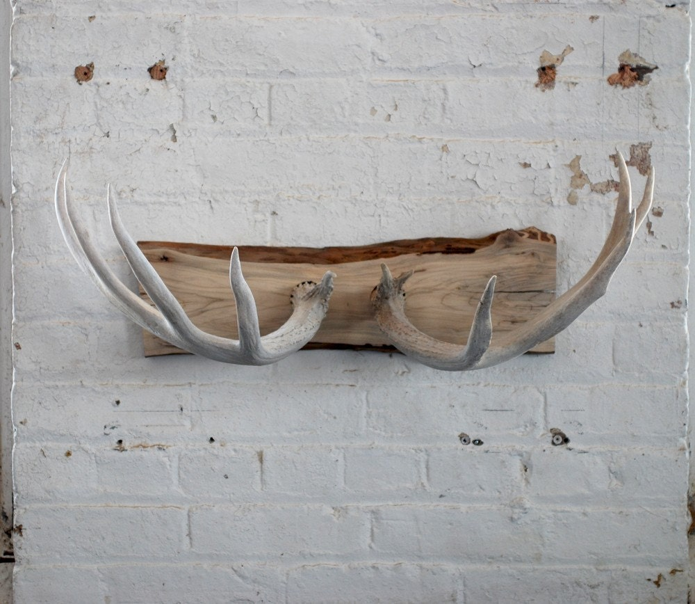 Naturally shed deer antler wall mount coat rack jewelry - How to make a wall mounted coat rack ...