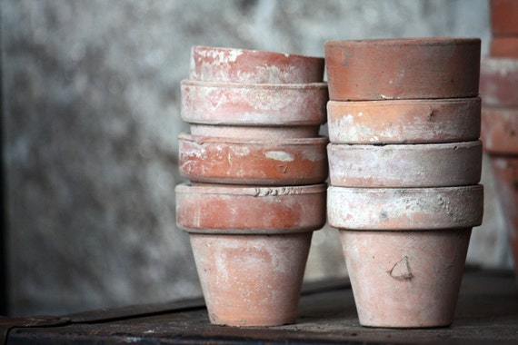 "Vintage ""Terra Cotta"" Garden Pots - Fine Art Photograph - Home Decor Spring Summer Gardening- Featured on the FRONT PAGE"