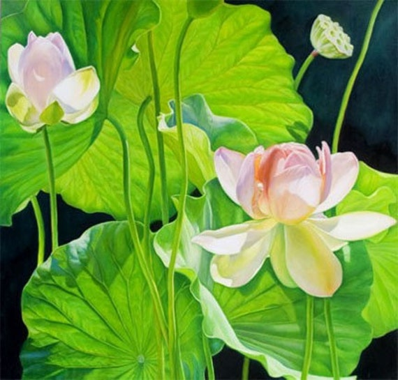 Morning Light 36x36 Lotus Flower Original Oil Painting, Holiday gift