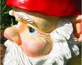 Happy Om Gnome - 18x24 Fine Art Photograph Print Poster - Garden Guardian